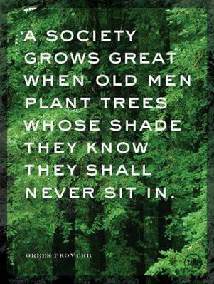 Greek Proverb, Garden Quote, Tree Quote